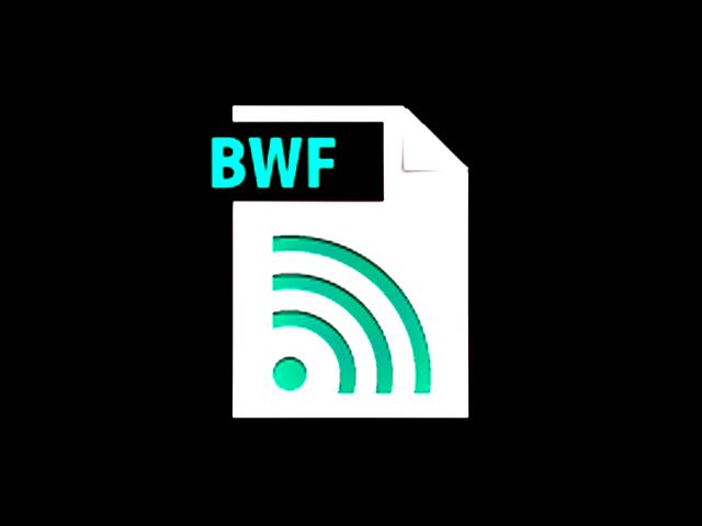 Know-how: Was ist und kann BWF?